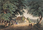 Die Rollwenzelei in Bayreuth